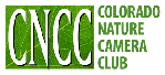 Colorado Nature Camera Club